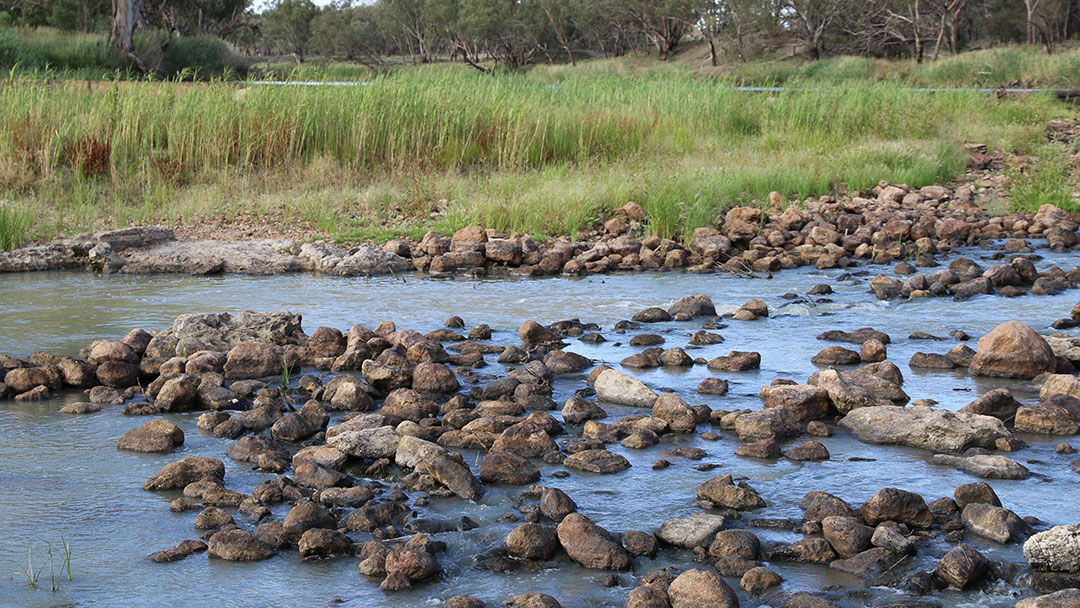 Learn more about the fish traps in Brewarrina. Watch Stuff Everyone Should Know About Australia on 10 play